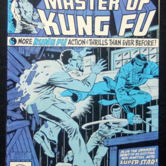 Master of Kung Fu 96